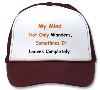 506fc-wandering_mind_hat-p148007924783259564xwzf_325